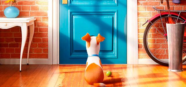 """Crítica de la película de animación """"Mascotas"""""""